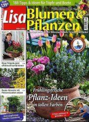 Titelblatt Lisa Blumen und Pflanzen